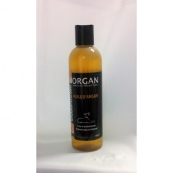 Shampoing Argan