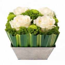 Bouquet Ouate