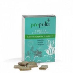 chewing gum propolis menthe reglisse
