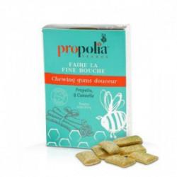 chewing gum propolis canelle