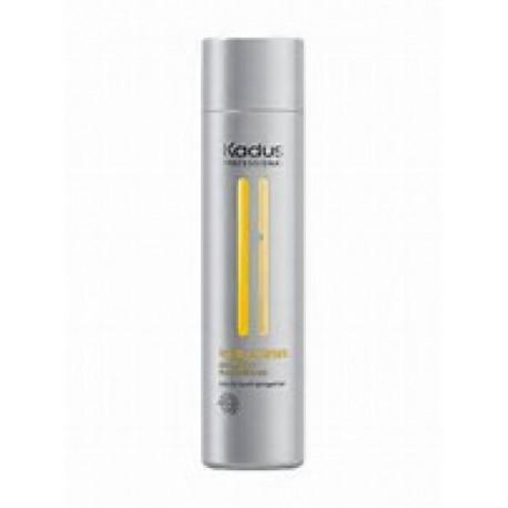 shampoing visible repair 250 ml